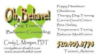 Dog Training - Behavior Counseling